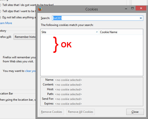 delete-cookie-firefox-04.jpg